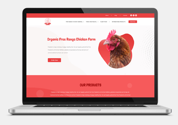 Website development for Chicken farm